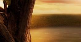 baldur mistel nordische mythologie
