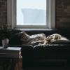 warum entsteht schlafsand