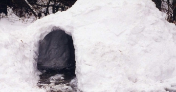 warum frieren eskimos nicht