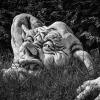 zwerge nordische mythologie