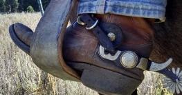 geschichte bootcut jeans bedeutung