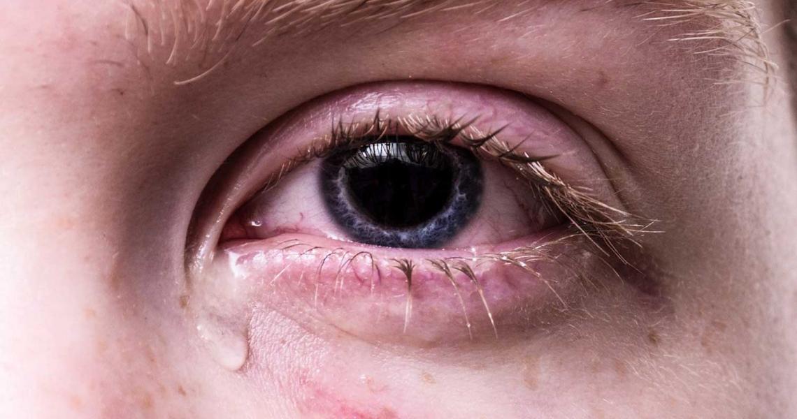 Auge : Definition, Bedeutung und Überblick