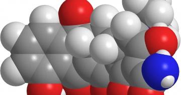 warum antibiotika nur bei bakterien