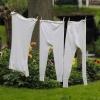 warum riecht nasse wäsche