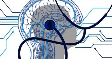 kognitive psychologie sensorik bedeutung