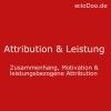attribution leistung motivation weiner leistungsbezogene attribution