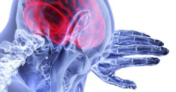 angstreaktion angstzustand was passiert bei angst im gehirn und körper