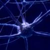 wissenschaftstheoretische grundlage zu freuds psychoanalyse