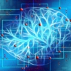 was bedeutet kognition kognitive fähigkeiten und funktionen