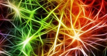 drogen neuronale auswirkungen