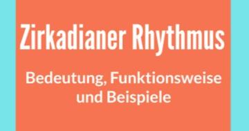 zirkadianer rhythmus bedeutung beispiele funktionsweise